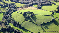 IMG_2870 (ppg_pelgis) Tags: omagh northern ireland uk aerial ppg flying tyrone cavanacaw rath trees circle