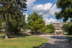 Summer at the Heidelberg City Park - August 2016 II (boettcher.photography) Tags: heidelberg germany deutschland badenwrttemberg august sommer summer 2016 sashahasha boettcherphotography park stadtpark citypark stadt city