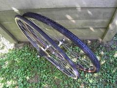 Schwinn Crosspoint 10 (Tomcatt65) Tags: kenda k830 700x38c mocha nimbus pasela 700x23c schwinn crosspoint cross gravel cx adventure