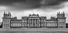 Blenheim Palace - Mono (Alan Reeve) Tags: blenheim palace efexpro silver nik mono black white