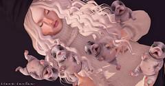 Shiny Shabby ( Stasey Oller ) Tags: black bantam shiny shabby pink acid newborn bulldog puppies french