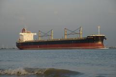 Santa Katarina DST_7026 (larry_antwerp) Tags: santakatarina bulk 9425930 oetker rudolfaoetker schip ship vessel        schelde
