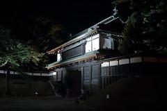 IMG_7553 (Nekogao) Tags: japan summer   tohoku tohokuregion aomori aomoriken aomoriprefecture hirosaki hirosakishi night nightscene nightview hirosakicastle hirosakijo castle japanesecastle