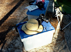 a beach camping trip (bluebird87) Tags: film dx0 c41 mamiya m645 kodak ektar 100 epson 4490 cape henlopen delaware