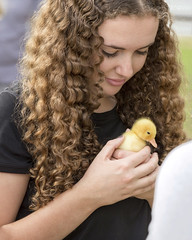 New friend (stephenisabellemaggie) Tags: duck duckling youngwoman cute animallover wonder canon6d canada quebec easterntownships townshippers
