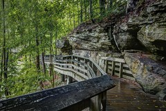 Elevated path (Notkalvin) Tags: path walkway woodenstructure cuyahogavalleynationalpark notkalvin mikekline outdoor walk hike brandywinefalls trees forest woods deciduoustrees notkalvinphotography