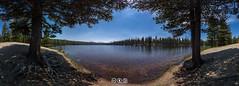 Dog Lake Panorama (au_ears) Tags: california mtdana mtgibbs yosemite doglake 2016 trees tuolumnemeadows panorama