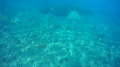 Snorkel Genoveses 1 (AAcero) Tags: buceo diving almera cabodegata isub