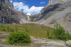 DSC_6418 (AmitShah) Tags: banff canada nationalpark