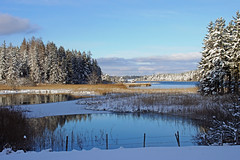 Winterliche Osterseen (dorena-wm) Tags: blue schnee winter white lake snow tree fence see blau zaun weiss baum osterseen ostersee hff iffeldorf dorenawm
