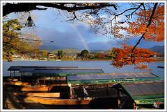 20121127_6942_京都之秋 (Redhat/小紅帽) Tags: autumn fall japan maple rainbow kyoto redhat 京都 日本 紅葉 嵐山 秋 楓葉 あき 秋天 楓紅 もみじ 彩虹 小紅帽 桂川 秋雨 あらしやま