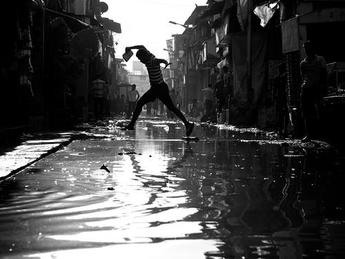 Bombay #6