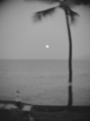 Moonset (gabo_) Tags: ocean morning moon beach set hawaii maui moonset honokowai toylens kulakane olympusep3