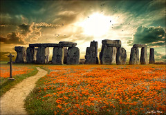 Rendez-vous (Jean-Michel Priaux) Tags: flowers sunset sky sun rock architecture landscape story mysterious paysage prehistoric legend matte presage legende patrimony priaux stonehage mygearandme blinkagain
