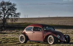 vw2 (JermyCorp Media) Tags: vw photoshop bug nikon low beetle sigma wideangle adobe chopped custom stretched 1972 tiki 1020 72 70200 f28 voodoo volkswage d300 choptop cs6 rollingshot