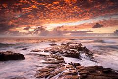 we live in beautiful world (Luke Tscharke) Tags: longexposure seascape water sunrise geotagged movement rocks australia stunning queensland pointarkwright geo:lat=2654652925103396 geo:lon=15310284823179245