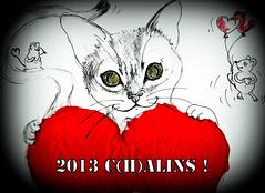 Amour, Tendresse, Amitis..... (peu prsente...ailleurs !) Tags: chat coeur croquis voeux amitis pourmescontactsettouslesautres rajoutezvoussilecoeurvousendit