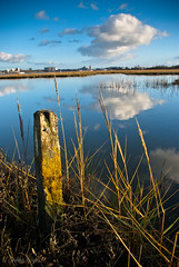 first post of 2013 (1 other people) Tags: uk england cloud reflection reeds post pentax filter lee cumulus dorset lichen poole saltmarsh polariser pooleharbour hamworthy holesbay k10d grahamhobbs