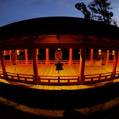 Itsukushima Shrine in the evening (kamoda) Tags: japan evening shrine hiroshima miyajima  itsukushima    2013
