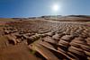 The sand after rain (TARIQ-M) Tags: art sahara landscape sand desert dunes camels riyadh saudiarabia canoneos5dmarkii tariqm tariqalmutlaq