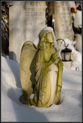 Even angels can be cold... (Ciao Anita!) Tags: winter friends snow cold netherlands cemetery graveyard angle sneeuw nederland d