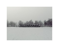 16/1 (obviously 5 believers) Tags: winter snow landscape minimal silage