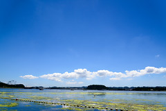 Hakkei Skyline (H.H. Mahal Alysheba) Tags: sky beach sea water japan nikon d800 afs nikkor 2485mmf3545