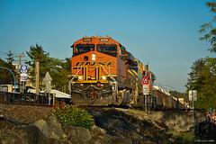 BNSF Loco #4256 - White Rock, BC Canada (spetersonphotography) Tags: whiterock southsurrey bnsf locomotive locomotive4256 loco4256 engine rail railway track surrey britishcolumbia canada nikond5200 nikon burlingtonnorthernsantafe burlingtonnorthernsantaferailway amtrak waterfront