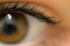 Un regard est dans tout pays un langage. (capucine.parayre) Tags: regard oeil cils marron macro flou pupille