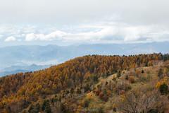 Mt.daibosatsurei (Masayuki Nozaki) Tags: mountain landscape japan autumn sigma ngc canon x5 kiss