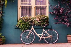 The Bike (tpatt83) Tags: ireland skibbereen skibb bike bed breakfast shamrock fuschia window bicycle tire plum tree plants sidewalk frontage curb appeal