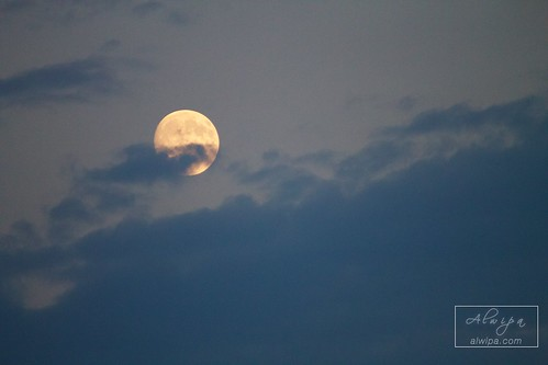 """The Moon • <a style=""""font-size:0.8em;"""" href=""""http://www.flickr.com/photos/104879414@N07/28998131696/"""" target=""""_blank"""">View on Flickr</a>"""