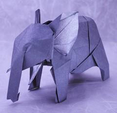 African Elephant - Nguyen Hung Cuong (Gustavo Rosa Ferrazani) Tags: origami paper paperfolding papiroflexia dobradura papel elephant origadores arte
