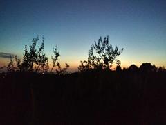 Assisi's Sunset  (sofiazandarin) Tags: assisi sunset tramonto landscape