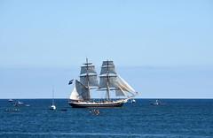 Morgenster leaving Blyth 29th August 2016 (DavidWF2009) Tags: northumberland blyth sea ships tallship sailingship calm yachts morgenster
