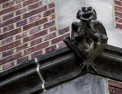 Who me? (mysunsin) Tags: gargoyle grotesque stone