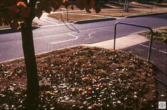 City (Pavel Vrzala) Tags: australia canberra gungahlin olympus om4 zuiko film fujifilm slide color street city