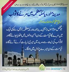 Hadith (imranafzal126) Tags: dawateislami newsletter madina makka makah hajj 2013 2012 shaheed jannat hadees islam safar musafir mout hadith