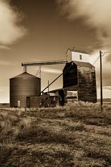 Former Days (cutthroatsrule) Tags: sepia grain elevator benchland montana