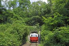 MAV Arpad Aamot 23 (peter.velthoen) Tags: mav ganz1935budapest hongarije arpad gysev becske becskeals bomen bos forest wald erd fk trtnelmivonat magyarorszg gyorssnautbusza