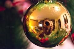 19.52 (Ali Alcaide) Tags: christmas tree me arbol navidad nikon alicia bola alcaide d3100 alicialcaide