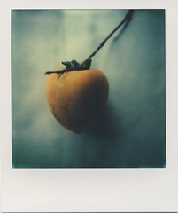 persimmon (daveotuttle) Tags: sx70 px70 impossibleproject
