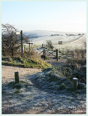 through the gate... (mag2003...) Tags: morning fence way downs sussex gate south style frosty posts footpath beacon ditchling