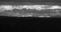 Mountains in the Distance (Paul T. Marsh/PositivePaul) Tags: 2012 fujis3pro lightroom3 manualmetering mountains northwest olympia paulmarshphotography tokina300mmf28 tumwaterhill blackwhite clouds maualfocus snow supertelephoto trees winter wwwpaulmphotographycom
