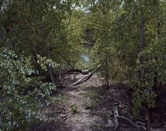 (Andrs Medina) Tags: film project river spain 6x7 elrio andresmedina
