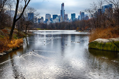 Lake & Skyline I (Joe Josephs: 3,166,284 views - thank you) Tags: newyorkcity lake newyork water landscape centralpark centralparknewyork centralparklake landscapephotography centralparkinwinter joejosephs nikon24120f4vrii joejosephsphotography copyrightjoejosephs2012 nikond800e copyrightjoejosephs