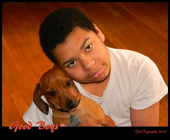 Good Boys (Flo Tography) Tags: dogs animals young dachshund youngman punkin stix doxie canines maalik