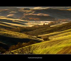 La luce del mattino Tuscany (pubblicata in Explore) (marcorenieri) Tags: