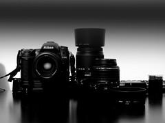 Nikon D7000 (Eric Goncalves) Tags: nikon array d7000 nikond7000 ericgoncalves