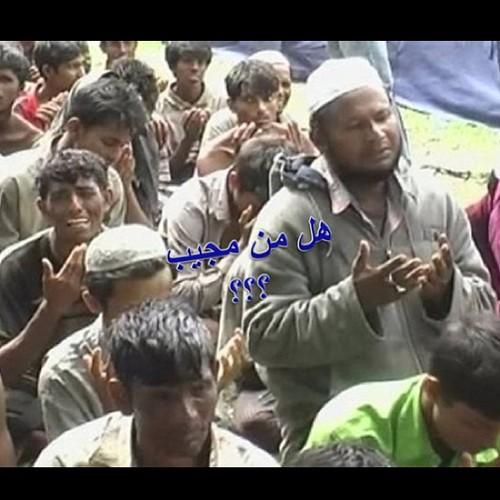 إخواننا في #بورما يدعون الله ويرجونه أن يلطف بأحوالهم ،،، فهم يساقون مجموعات إلى الموت ،، ونحن أمة المليار ونص مليار مسلم لم نتحرك ساكنا وكأن الأمر لايعنينا ،، وكأن من يقتل هناك ليسوا إخوة لنا